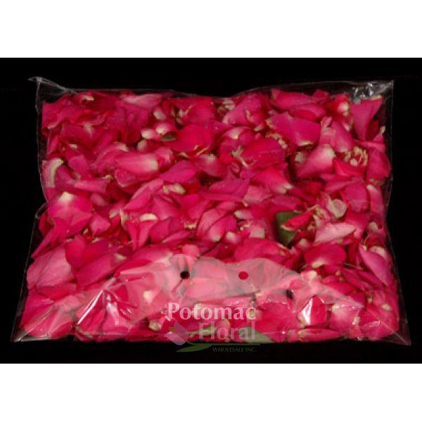Rose petals hot pink 200 gram bag potomac floral wholesale mightylinksfo