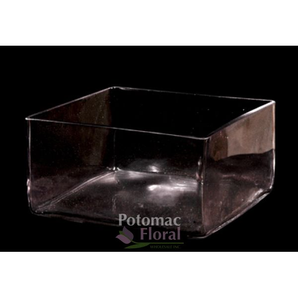 Glass Square Vase 3 Tall X 8 X 8 Potomac Floral Wholesale